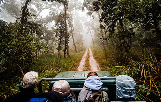 Chitwan-National-Park-jigsaw