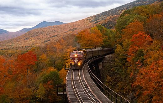 orange-train-between-fall-trees-k
