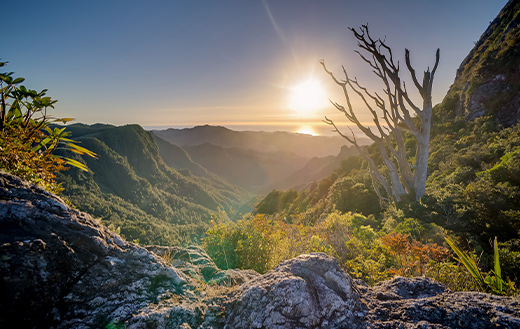 Mountain-Valley-k