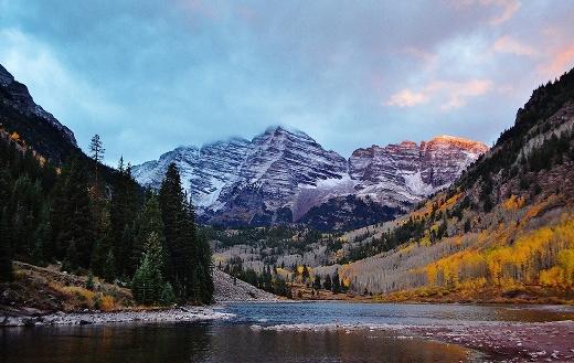 Colorado Aspen jigsaw
