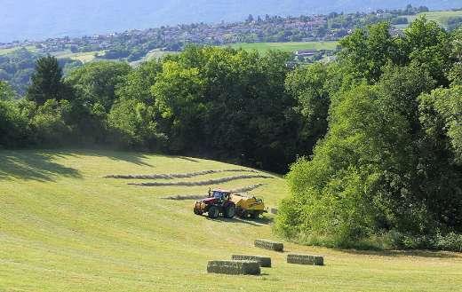 Hay field landscape tractor