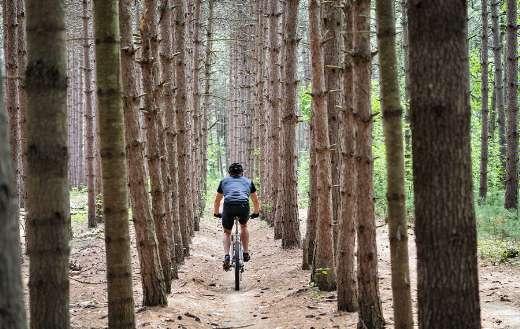Mountain bike cycling fitness