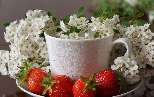 Ripe strawberries cherry flower