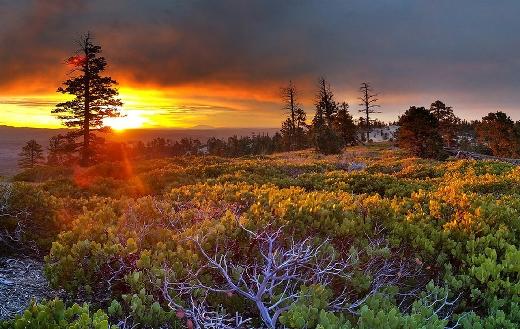 Sunrise sunset scenic nature