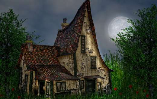 The night moon nature house online