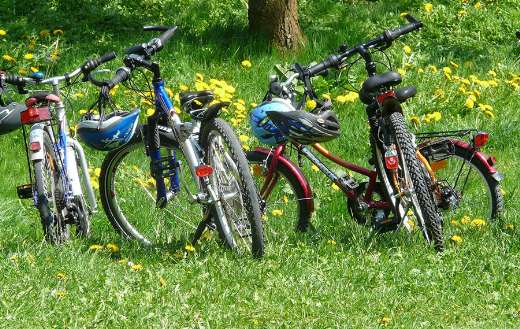 Family outing nature bike