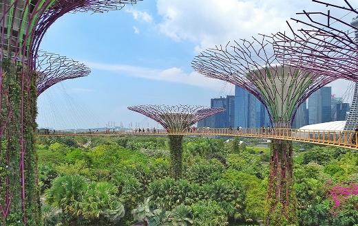 Nice garden Singapore bay puzzle