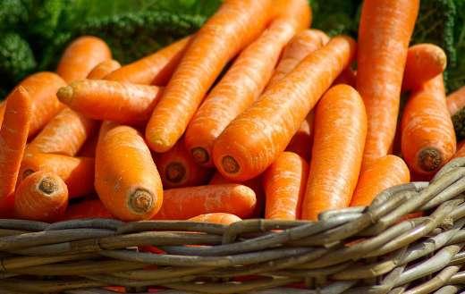 Basket full carrots