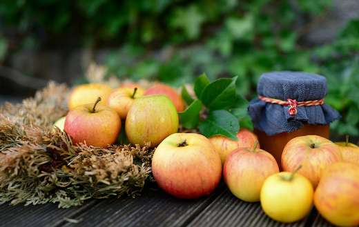 Marmalade apple fruit jam puzzle