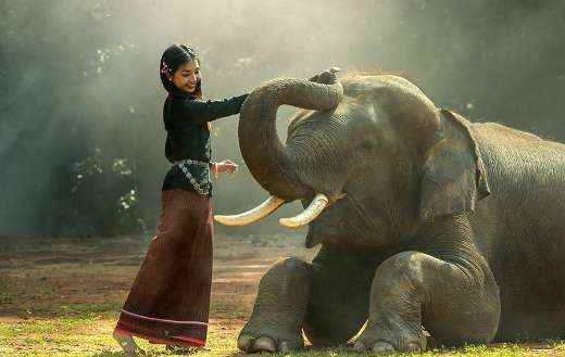 Asian girl with elephant puzzle
