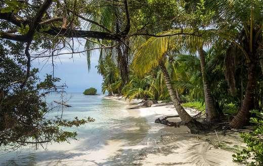 Beach online