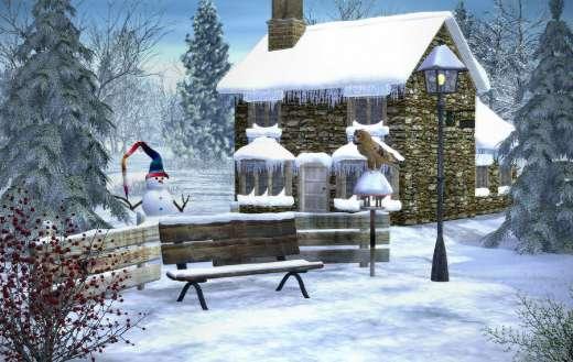 Cold frost winter season puzzle