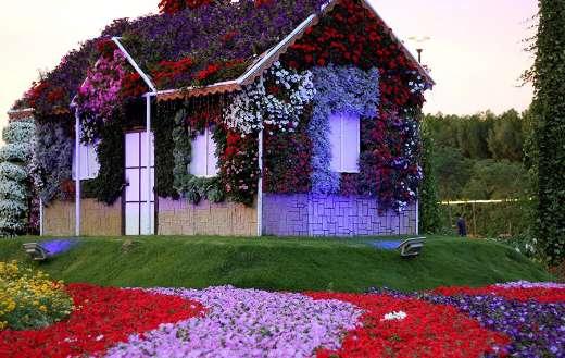 Dubai miracle garden design online