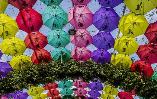 Miracle garden Dubai umbrella decoration