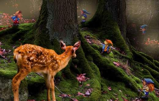 Roe deer puzzle