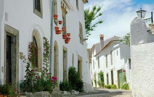 Nice white houses online