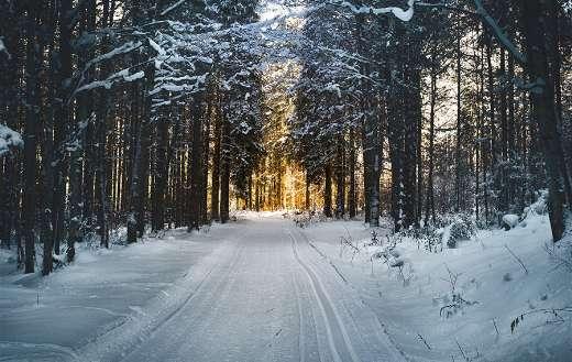 Winter sunrise sunset online