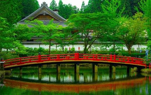 Beautiful bridge in forest puzzle