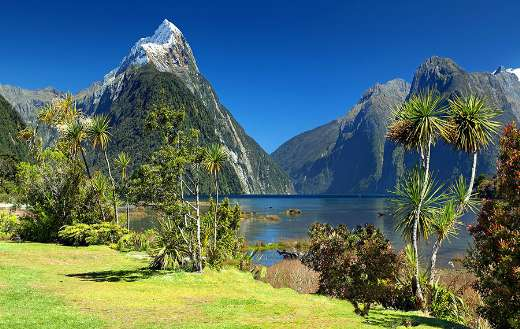 Milford sound nature