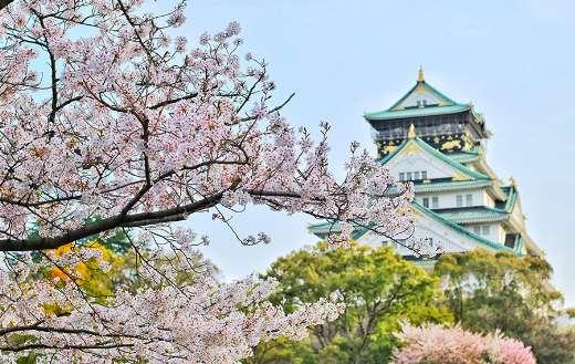 Osaka castle park online