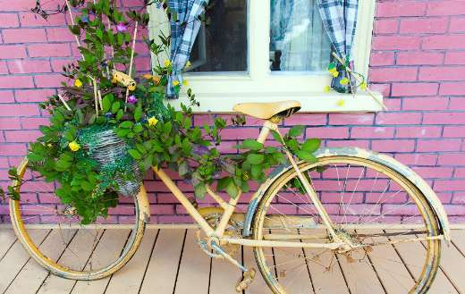 Bike decorated old planted green