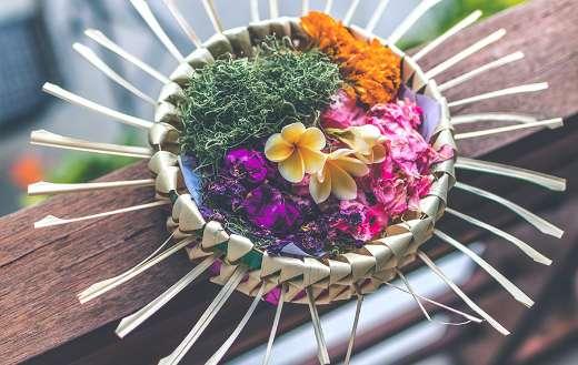 Poetry flowers in urdu puzzle