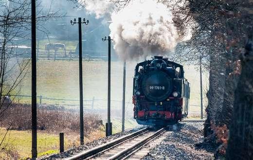 Black train puzzle