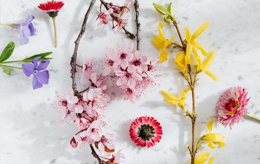 Colorful mix flowers online