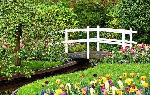 White wooden bridge garden