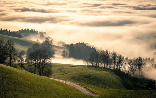 Early morning view with mist