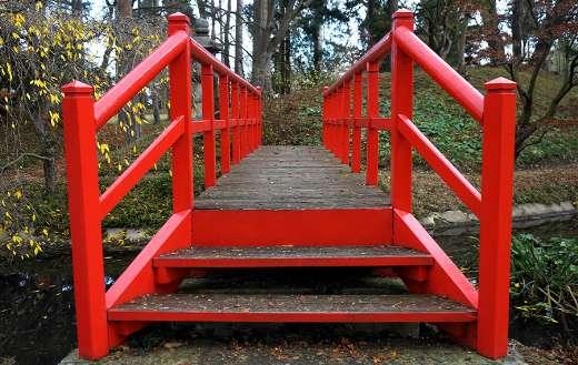 Park bridge walkway wooden path outdoor