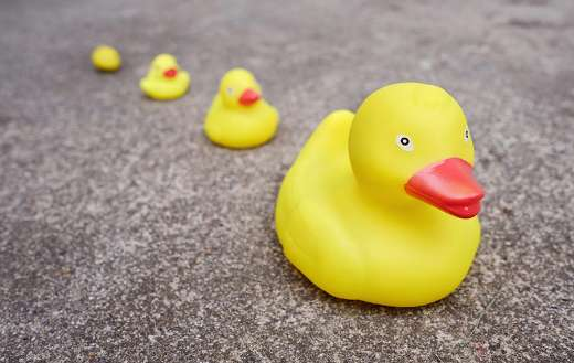 Rubber ducklings toys