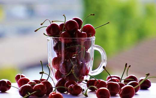 Cup with cherries fruit online
