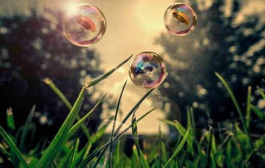 Soap bubbles over grass online