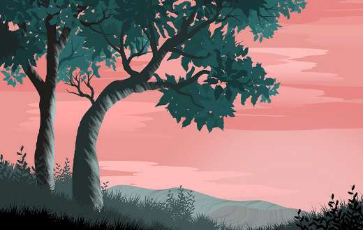 Sophia de mello breyner andresen tree