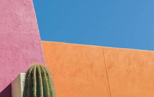 What a colorful walls
