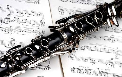 Clarinet instrument puzzle