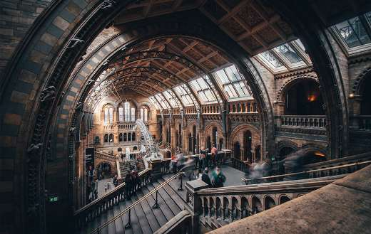 Natural history museum London online