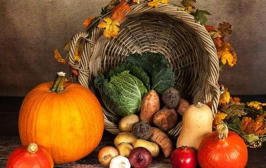 Autumn vegetables pumpkin