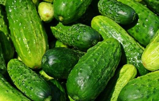 Cucumbers vegetables puzzle