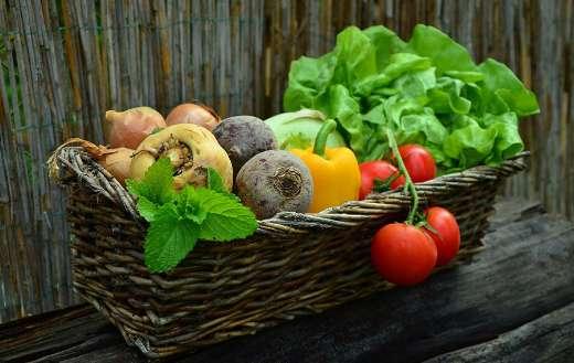 Harvest basket vegetables puzzle