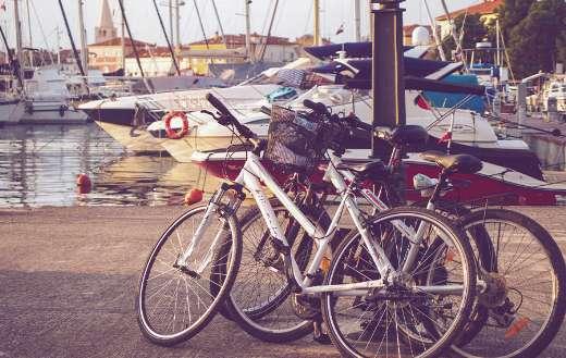 Marina harbor pier online