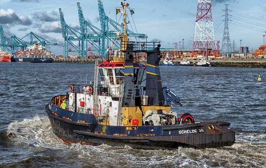 Bay harbor port online
