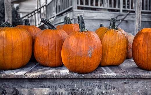 Hallo halloween pumpkin online